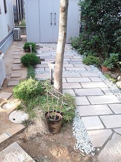 埼玉県川口市 草むしり屋 庭造り11