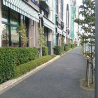 埼玉県川口市草むしり屋