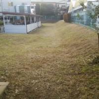 草むしり屋 団地の草刈り
