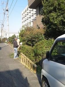 埼玉県川口市 草むしり屋 剪定4