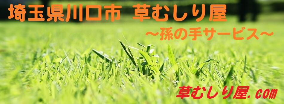 埼玉県川口市 草むしり屋(草むしり屋.com) ~孫の手サービス~