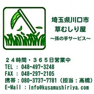 埼玉県川口市草むしり屋 画像