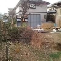 便利屋 川口孫の手 庭木の抜根 伐採