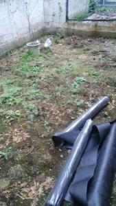 さいたま市 草むしり 草刈り 便利屋 格安