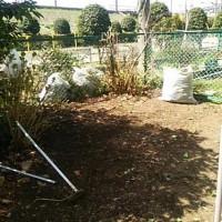 庭木 抜根 便利屋 ガーデン 造園 見積