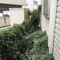 便利屋 川口 草刈り110番