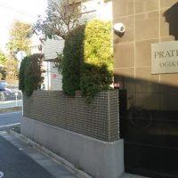 東京都 さいたま市 埼玉 剪定 伐採