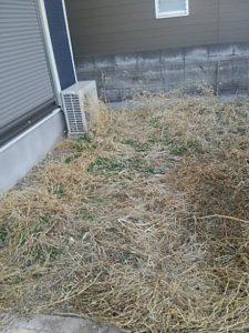 便利屋 草刈り 草むしり 草取り 除草 ザ麻生