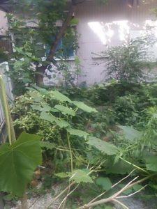 不用品整理 自転車処分 川口市 廃品回収