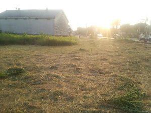 草刈り 空き家 更地 便利屋 草むしり