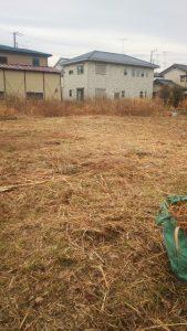 草加 越谷 さいたま 戸田 空き家 川口 蕨 草むしり 草刈り